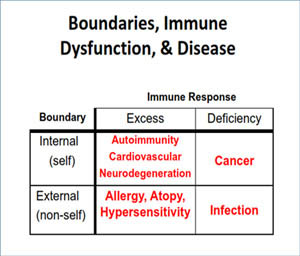Immune-Deficiency-Chart-Groton-Wellness
