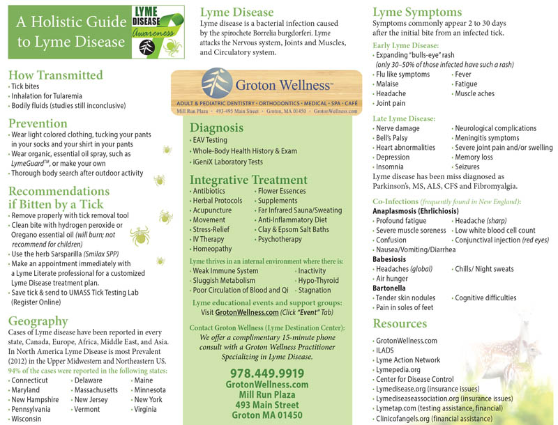 Holistic-Approach-Lyme-Disease-Information-Groton-Wellness